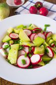 picture of radish  - Salad from different kinds of radishes and green onions - JPG