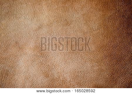 Brown leather texture background, surface. Close-up of natural grain cow leather