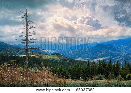 Village in mounains. Autumn  in Carpathian mountains