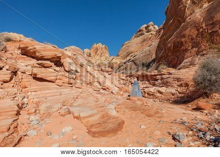 the rugged scenic landscape of the valley of fire state park Nevada