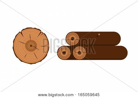 Wood slice texture tree circle cut raw material vector. Lumber forest annual concentric detail plant. Bark stump old log aging round age section.