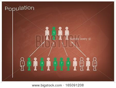 Business and Marketing or Social Research Process The Sampling Methods of Selecting Sample of Elements From Target Population to Conduct A Survey on Brown Chalkboard.