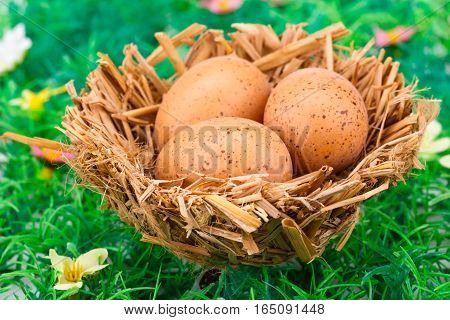 Easter eggs decoration in nest on artificial grass background.