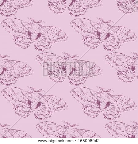 Seamless pattern with violet lined moth on pink background
