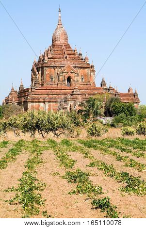 Htilominlo temple at the archaeological site of Bagan on Myanmar