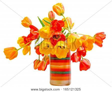 Red, Yellow And Orange Tulips Flowers In A Vibrant Colored Vase, Close Up, Isolated, White Backgroun