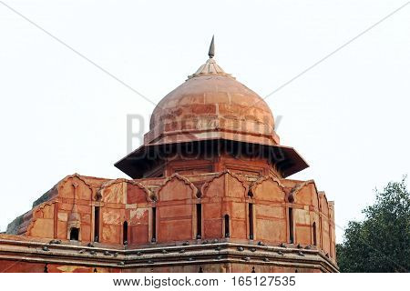 The dome of Red Fort with pigeons sitting on it.
