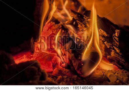 woods are burning in fireplace, warm, heat, fire