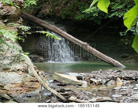 Small Waterfall with a tree in front in a Delaware County Park in Ohio