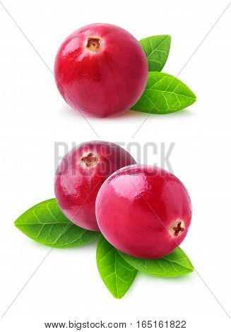 Isolated Cranberries