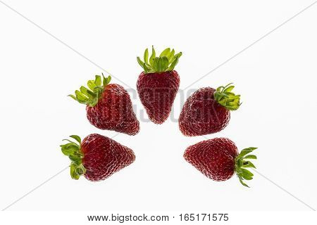 five strawberries arranged in semicircle on white background