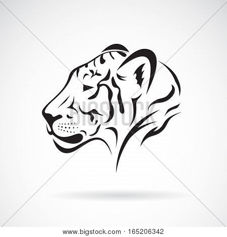 Vector of a tiger head on white background. Wild Animals