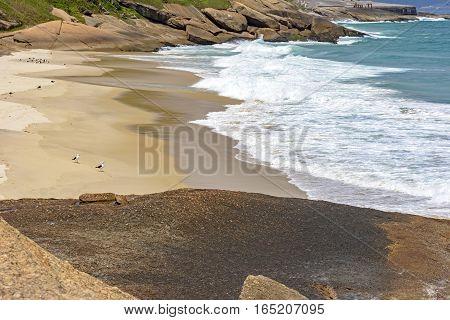 Seagulls and waves at Devil beach in Ipanema Rio de Janeiro