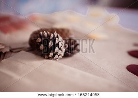 St. Valentine's Day: forest cones and paper envelopes, are ready to packing of the love letter