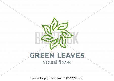 Green Leaves Star Logo design vector template.