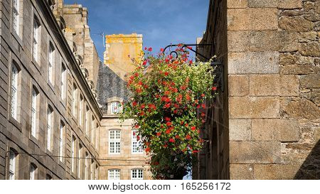 Pot with flowers suspended on the wall and the facades of Privateer's ancient House, Saint-Malo, Bretagne, France