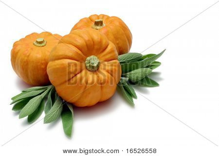 Mini Pumpkins with Sage leaves on white