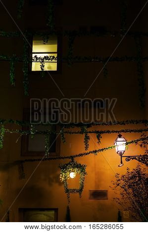 plant decorated alley in Florence Italy at night