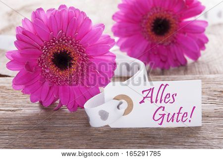 Label With German Text Alles Gute Means Best Wishes. Pink Spring Gerbera Blossom. Vintage, Rutic Or Aged Wooden Background. Card For Spring Greetings.