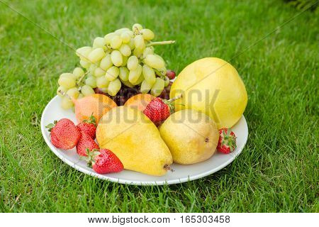 fresh fruit on a plate  in the garden