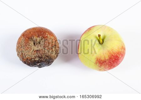Old Wrinkled Moldy And Fresh Apple On White Background