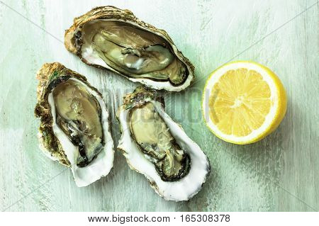 A photo of freshly opened oysters with a slice of lemon, on a wooden background texture