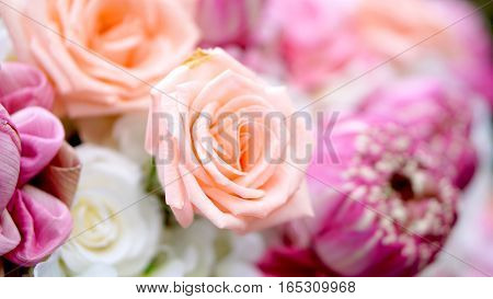 Pink Roses And Lotuses Flower Romantic Valentine Background With Copy Space
