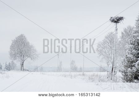 Winter landscape of fields and trees covered with snow