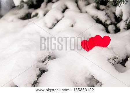 Two red hearts lie on the snow-covered fir branches