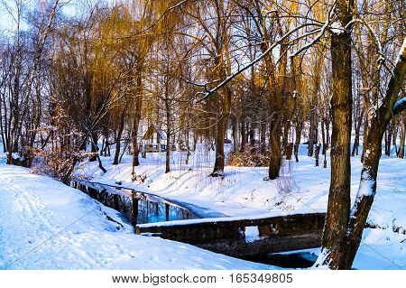 beautiful winter landscape in the Park river bridge