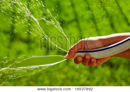 Women hand watering the backyard grass with a garden hose