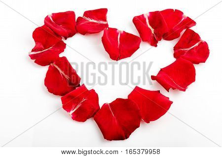 Heart shaped red rose petals on white background