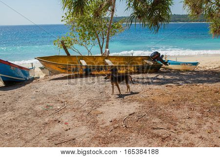 East Timor White Sand Beaches