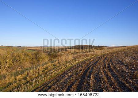 Hillside Field And Valley