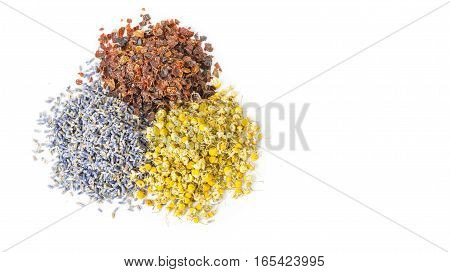 Dried herbs and flowers folk medicine of nature. Treats force of nature. Cynosbati Matricaria chamomilla lavandulae. Copy space