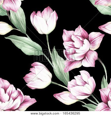 Seamless pattern with tulips. Hand draw watercolor illustration