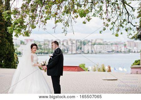 Wedding Couple Stay Under Tree Background City Lake.
