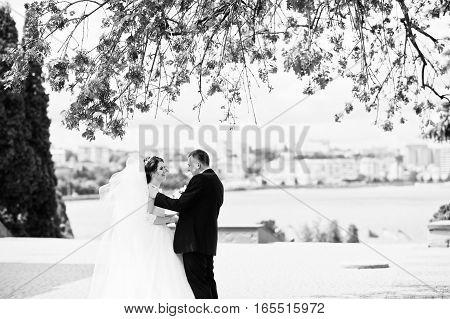 Wedding Couple Stay Under Tree Background City Lake. Black And White Photo
