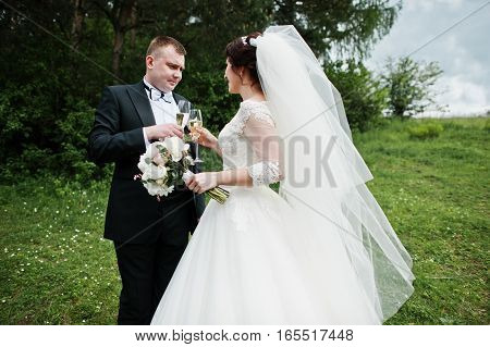 Wedding Couple With Glasses Of Champagne In Hands.