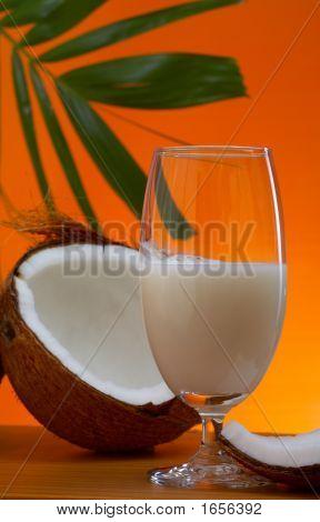 Tropic Nectar