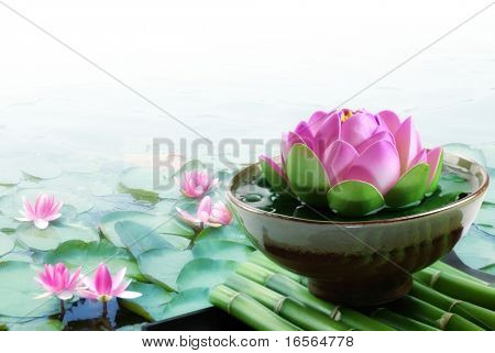 Spa still life with lotus for body treatment