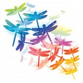 stock photo of fireflies  - dragonfly colorful design - JPG