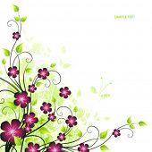 Постер, плакат: Красота весной карта
