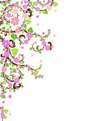 stock photo of cherry trees  - blossom cherry tree - JPG