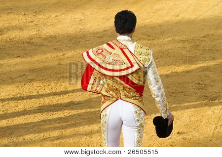 Fighting bull picture from Spain. Corrida de Toros