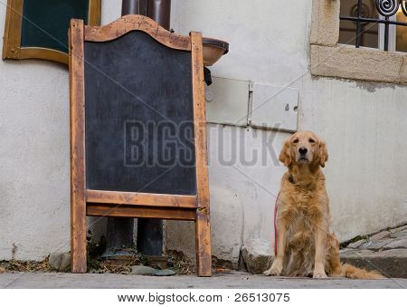 Restaurant menu board on the street with a dog sitting near by