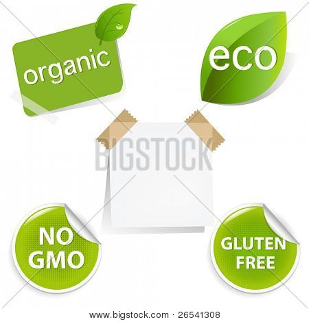 Eco Labels Set, Isolated On White Background