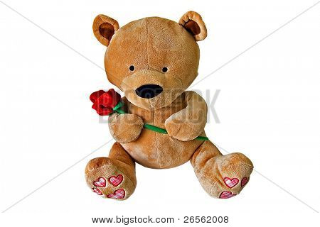 Cuddly teddy bear holding a red rose
