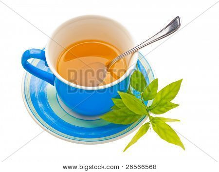 Herbal tea on a blue cup with fresh green leaves and a spoon isolated on a white background with clipping path