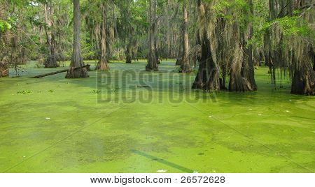 Black Bayou Lake